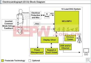 心电图仪(ECG)