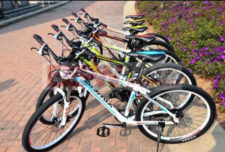 GSM/GPRS通信模块在自行车防盗追踪中的应用