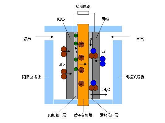 质子膜交换燃料电池结构示意图.jpg