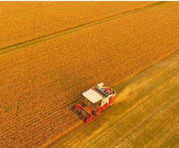 二氧化碳传感器MinIR用于粮食熏蒸消毒中CO2监测