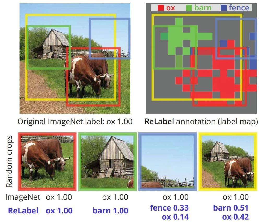 分类干货实践 | 重新标注128万张ImageNet图片:多标签,全面提升模型性能