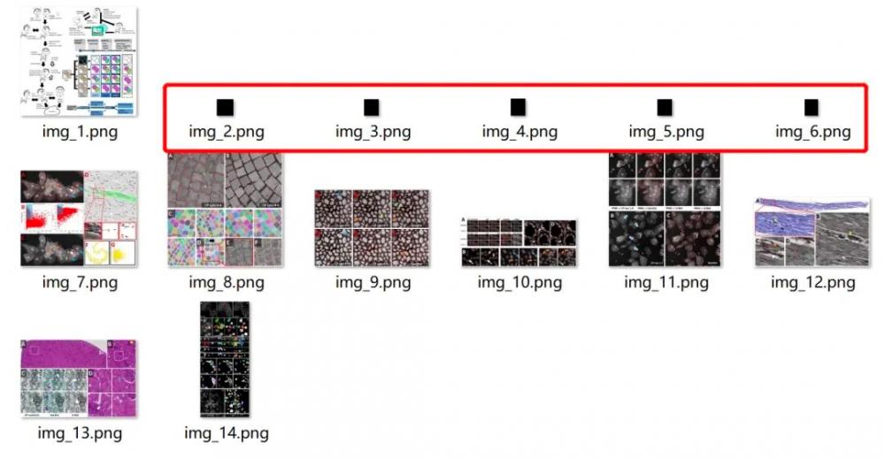 三种方法,用Python轻松提取PDF中的全部图片