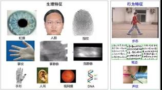 生物特征识别学科发展报告