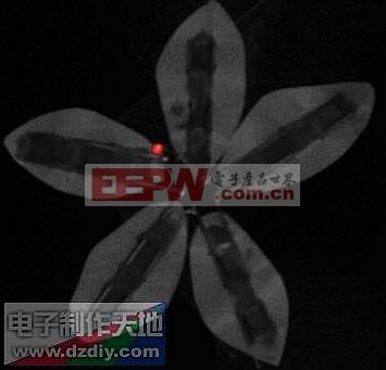 果汁LED灯 led flower